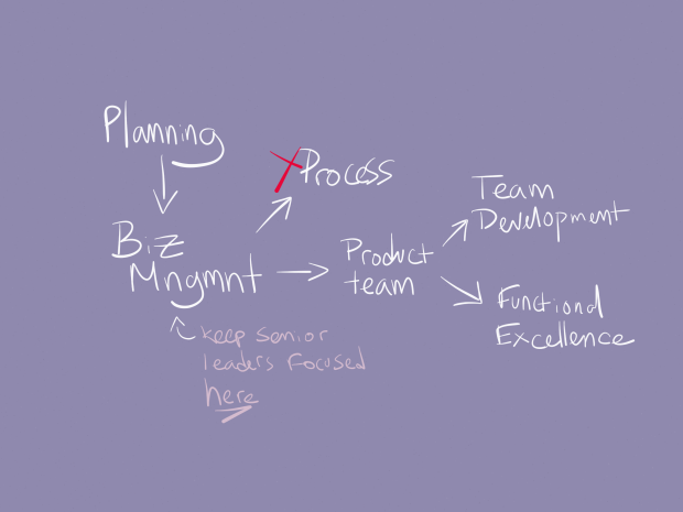 Here's the rough team structure. Senior leaders should focus on business management, while the product team should focus on process, team development, and functional excellence.